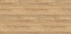 Hickory Oak